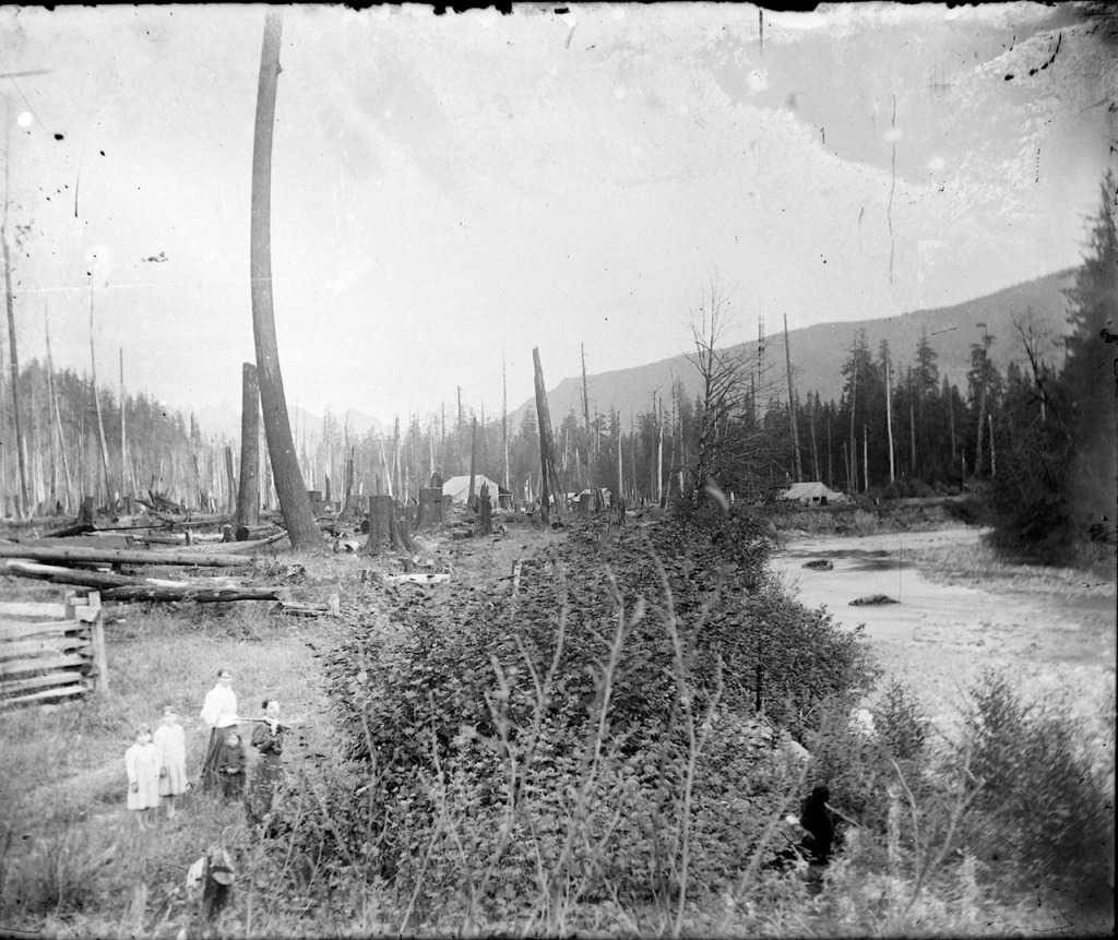 IMG_5789_Woman_Children_Stream_Clearcut_Houses