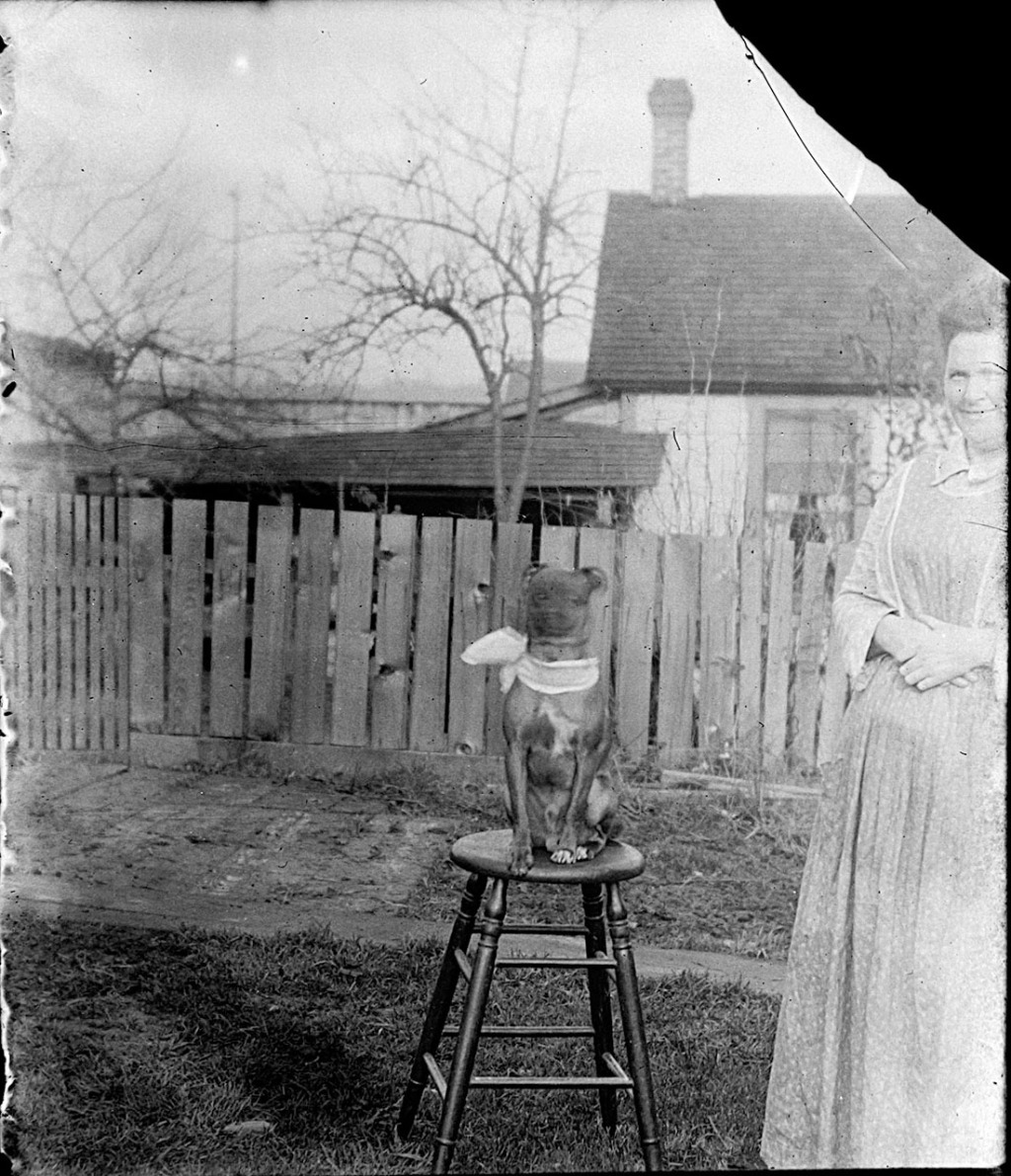 A woman with her dog, who is on a stool, in their back yard.