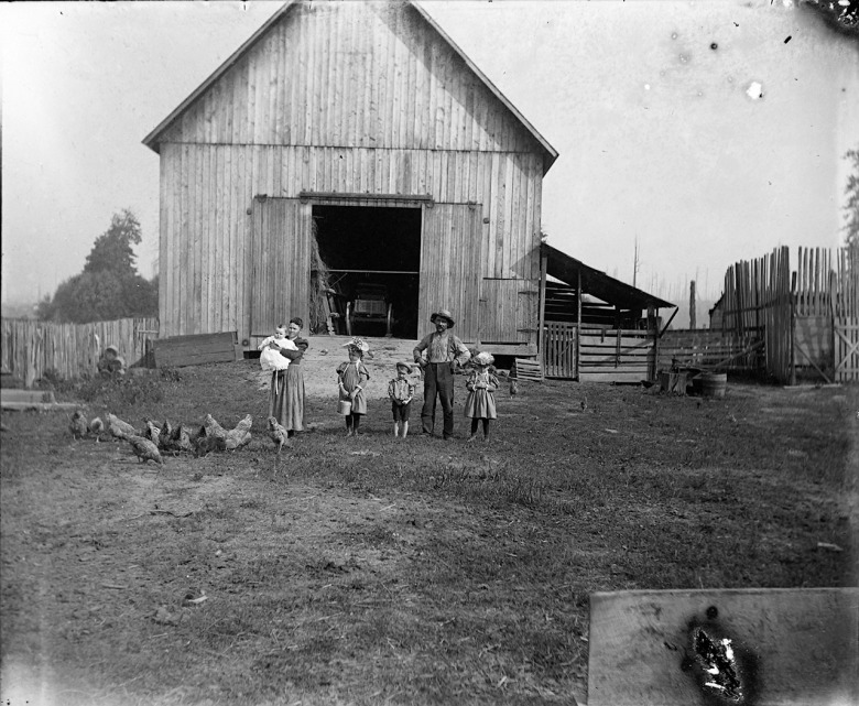 IMG_5817_Family_Chickens_Barn